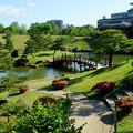 新緑の玉泉院丸庭園(3)