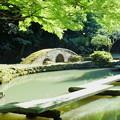 尾山神社 図月橋  庭園の池(2)