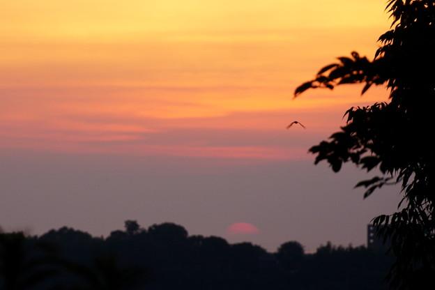 日が沈みかかり