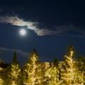 Photos: 昨晩の月