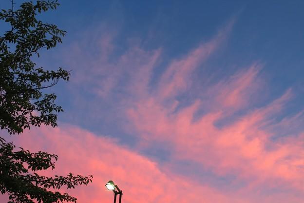 南の空の夕焼け