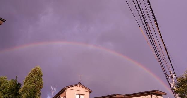 帰り道の大きな虹(1)