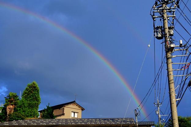 Photos: 虹(5)