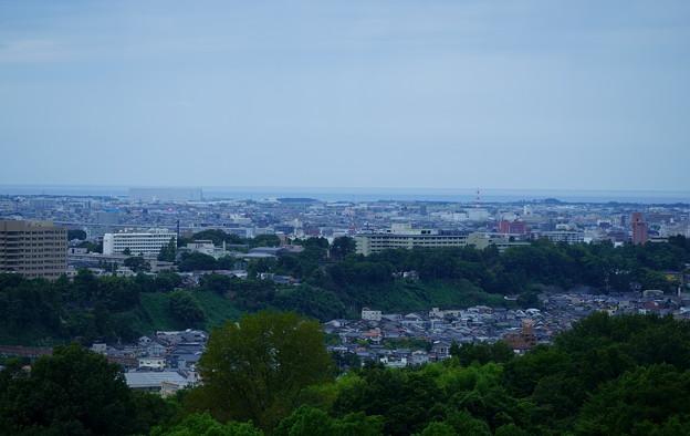 金沢市の街並みと日本海  奥卯辰山健民公園から