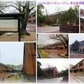 Photos: いしかわ赤レンガミュージアム・県立歴史博物館