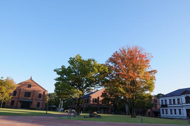 いしかわ赤レンガミュージアム(県立歴史博物館)と 国立工芸館(右)