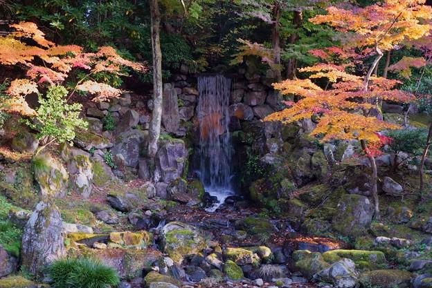 Photos: 兼六園 瓢池 翠滝