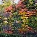 兼六園 瓢池(1)