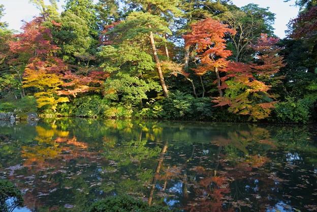 兼六園 瓢池(2)