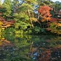 Photos: 兼六園 瓢池(2)