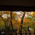 Photos: 兼六園 山崎山 東屋から