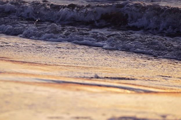千里浜なぎさドライブウェイ 波(1)