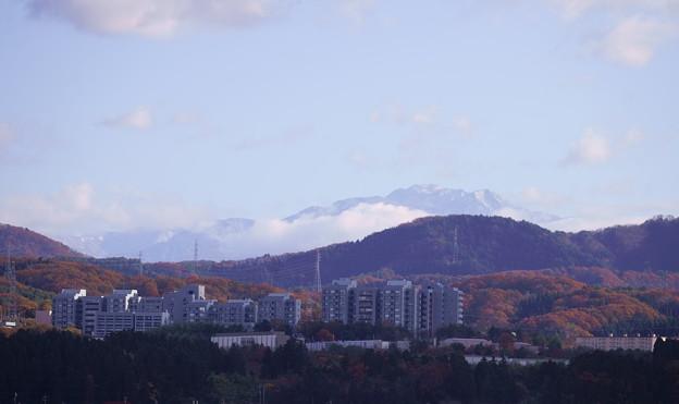 白山と紅葉