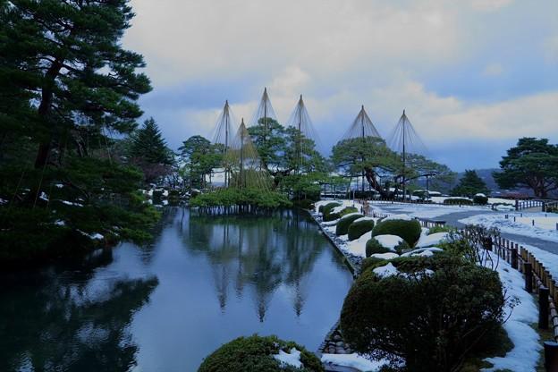 Photos: お正月の兼六園 唐崎松