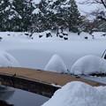 Photos: 雪の兼六園  徽軫灯籠と虹橋