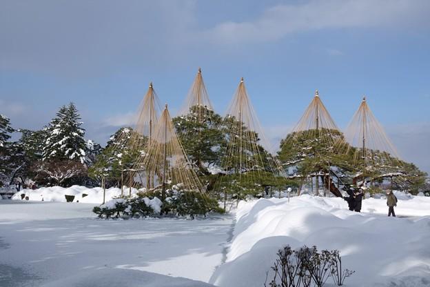 Photos: 雪の兼六園 唐崎松