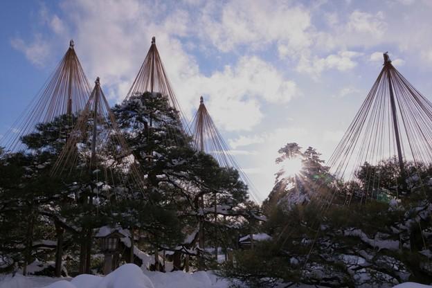 Photos: 兼六園 太陽