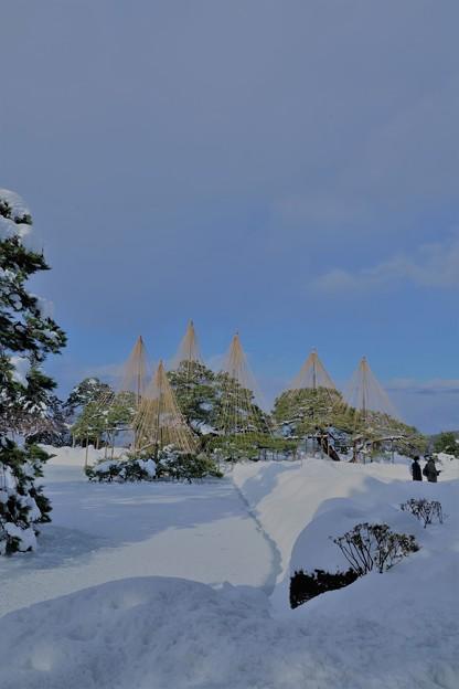 雪の霞が池と唐崎松