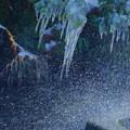 Photos: ツララと噴水(2)