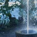 Photos: ツララと噴水(3)