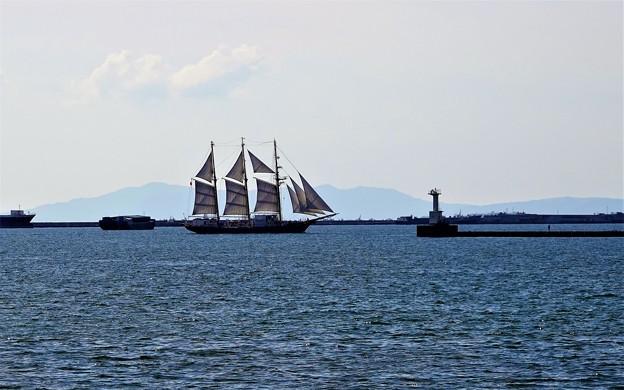 DSC06278-帆船