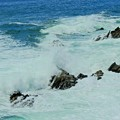 Photos: 荒磯浪の雄たけび景