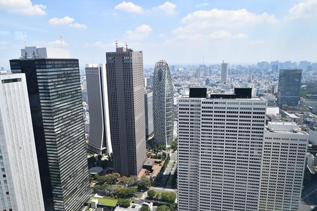 2020.8.13.東京都庁