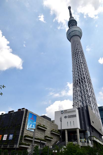 2020.8.14 東京・押上