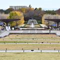 2020.11.24 東京・国営昭和記念公園