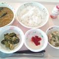 Photos: 9月24日昼食(茄子とひき肉のカレーライス) #病院食
