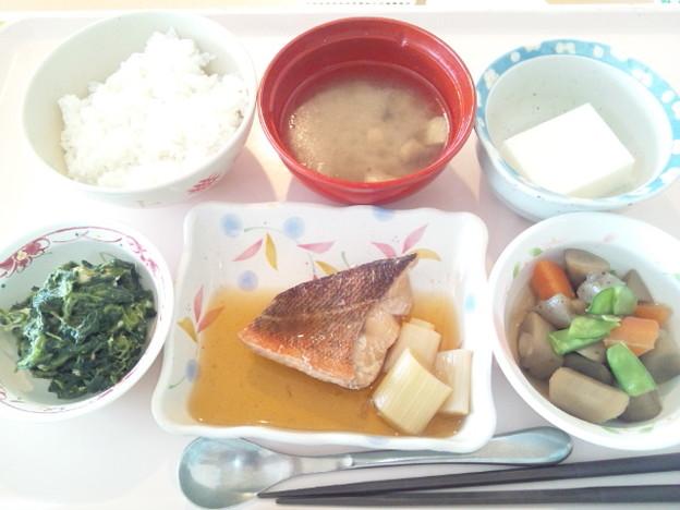 11月29日昼食(めばるの煮付け) #病院食