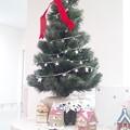 Photos: スタッフステーションのクリスマスツリー(まだ準備中?) #クリスマスツリー