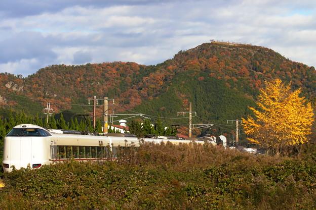 黒井城跡の紅葉
