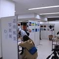 Photos: 写真展初日無事終了