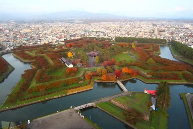 【秋の五稜郭タワーから見た紅葉】