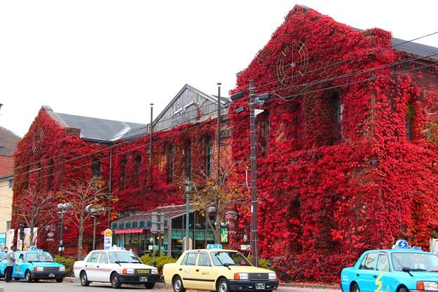 【紅葉で綺麗なはこだて明治館】