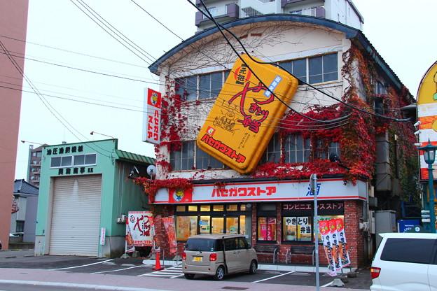 【ツタも紅葉で綺麗なハセガワストアベイエリア店】