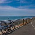 三浦半島サイクリング-0241