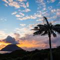 写真: 八丈島-4164
