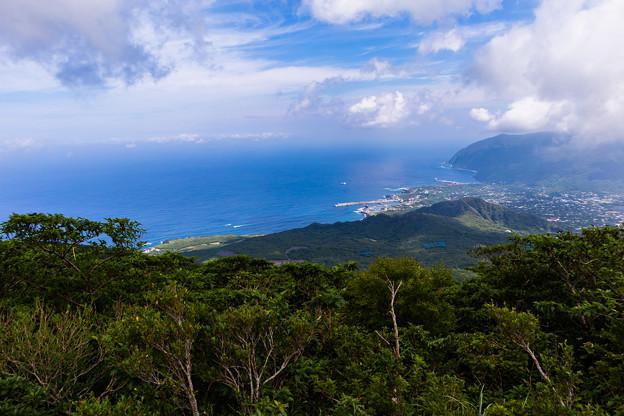 写真: 八丈島-2416