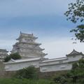 写真: 初夏の姫路城