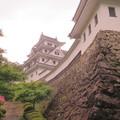 Photos: 郡上八幡城