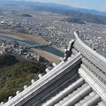 岐阜城からの眺望