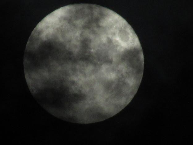 Photos: 月に叢雲