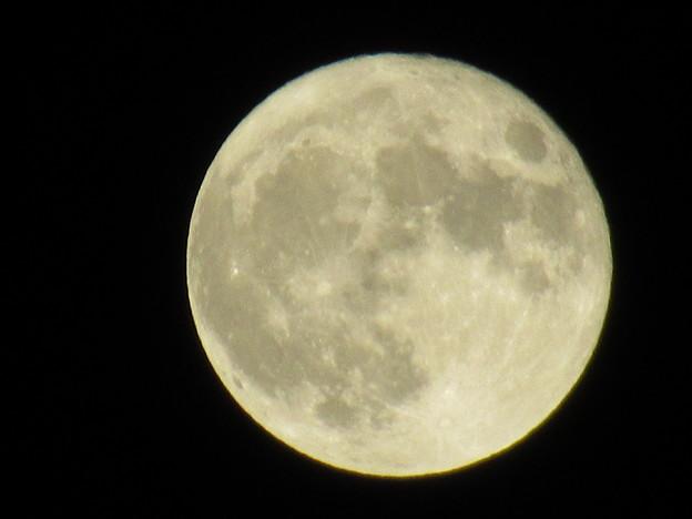 Photos: 十六夜 20:03