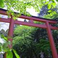 香取神宮 二の鳥居