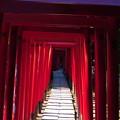 Photos: 乙女稲荷への道