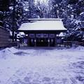写真: 諏訪大社 上社本宮 拝殿