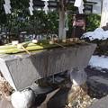 写真: 諏訪大社 下社春宮 手水舎