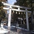 写真: 諏訪大社 下社春宮 鳥居